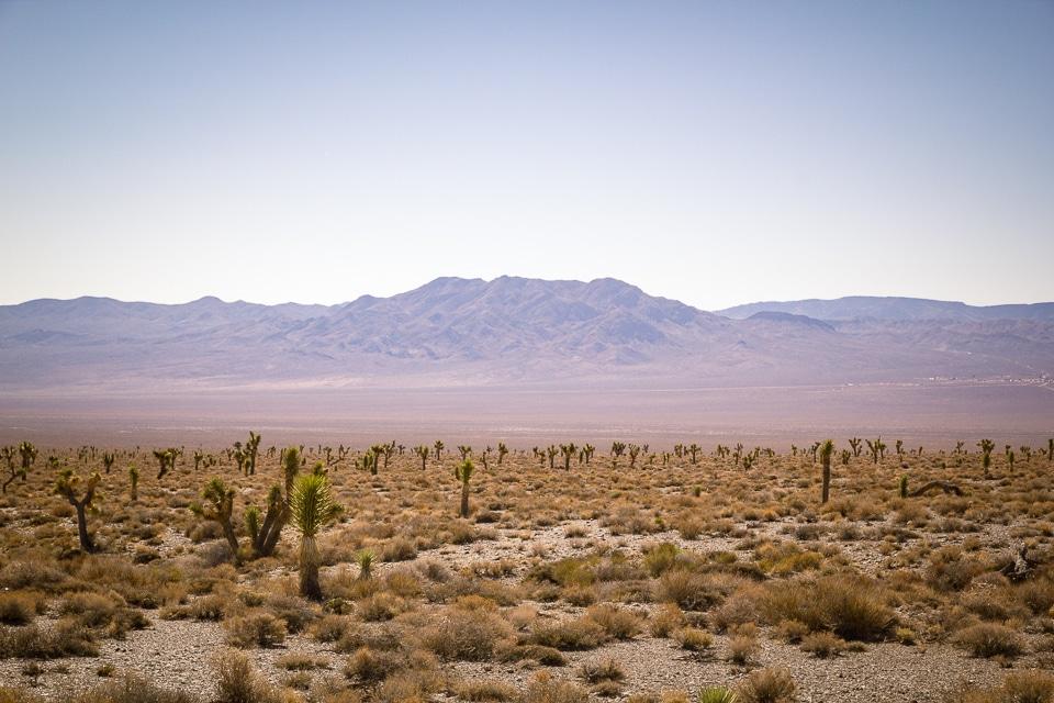 roadtrip 15 jours ouest américain death valley