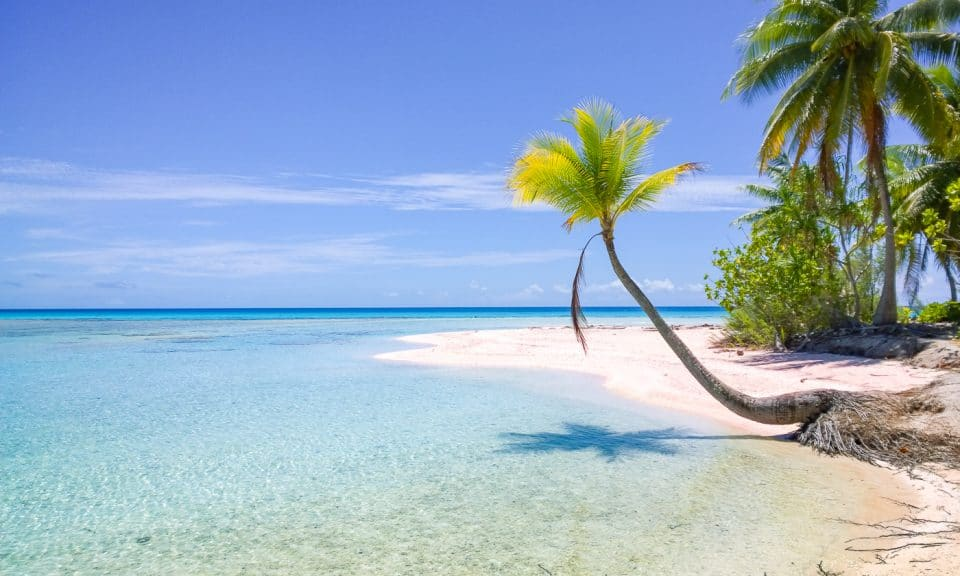 polynésie plage sable rose