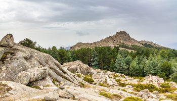 Sardaigne-monte-limbara-randonnee-header