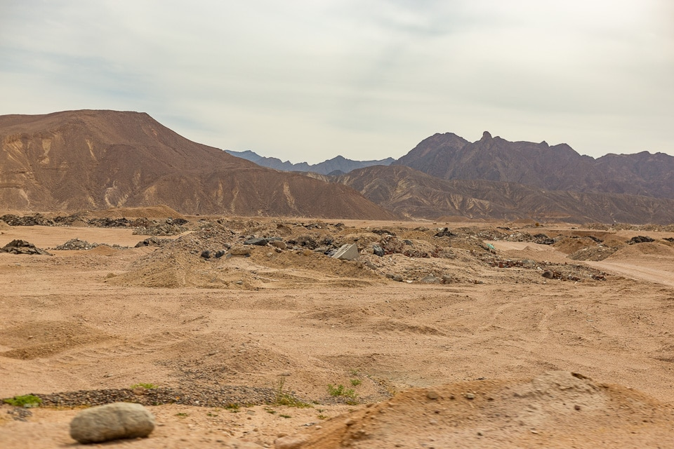 desert arabique egypte