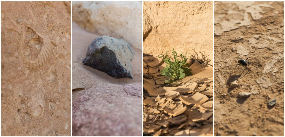 quad desert egypte