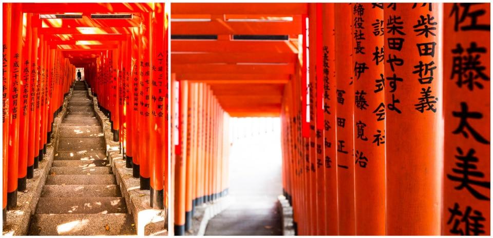 hie jinja torii quartiers incontournables sud Tokyo
