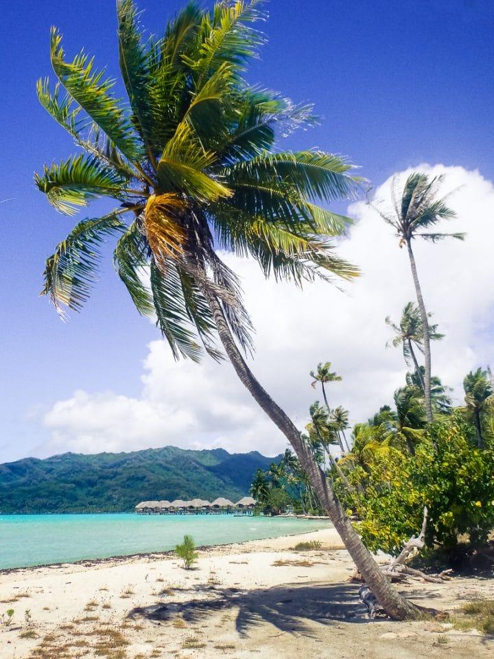 polynesie-raiatea-motu