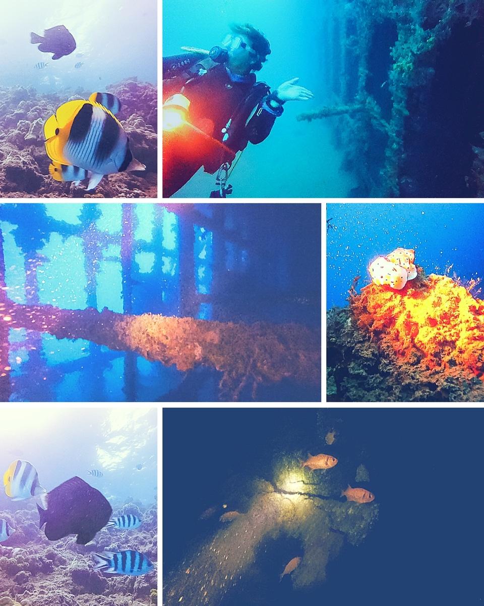 polynesie-raiatea-plongee
