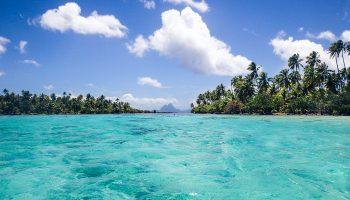 polynesie-raiatea-tahaa-corail