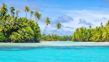 polynesie-rangiroa-recif-cocotiers