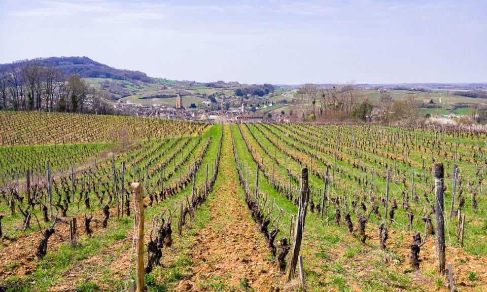 vignobles arbois en franche comté