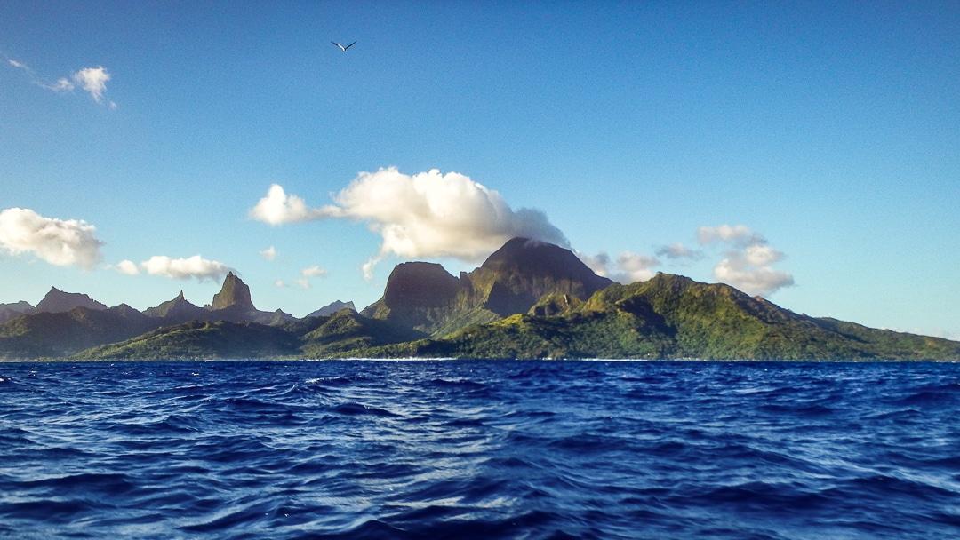 polynesie-moorea