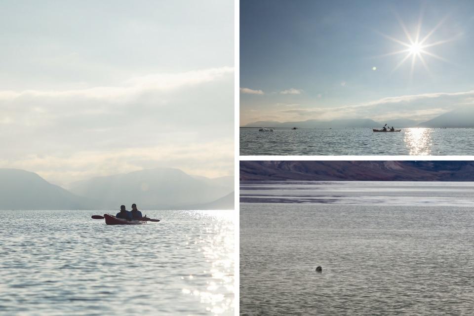 kayak-spitzberg-norvege