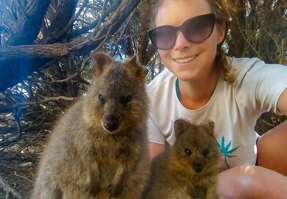 australie-quokka