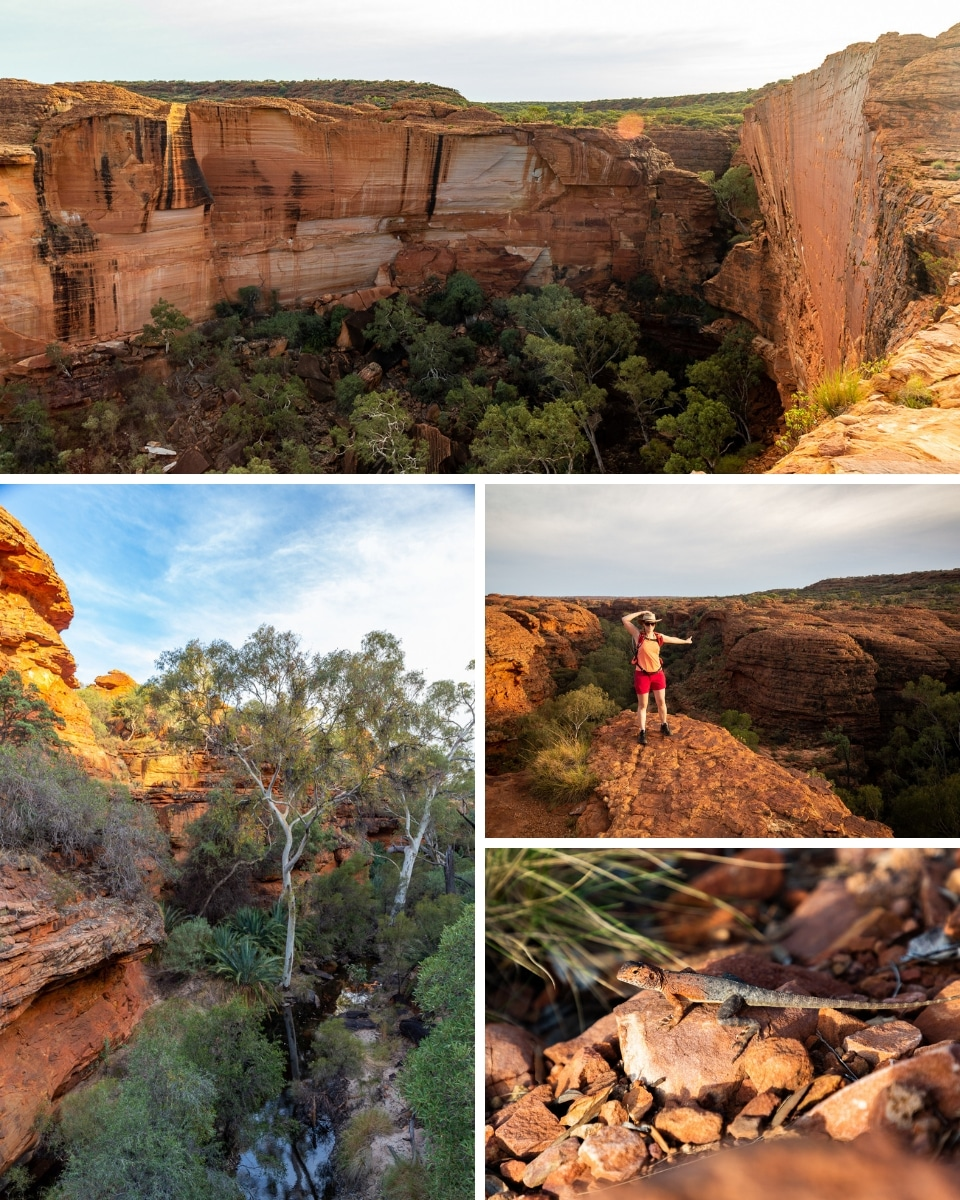 Australie-redcenter-kings-canyon14
