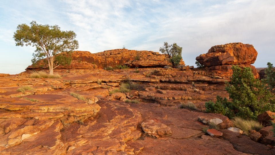Australie-redcenter-kings-canyon7
