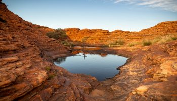 australie-red-center-kings-canyon-mereenie