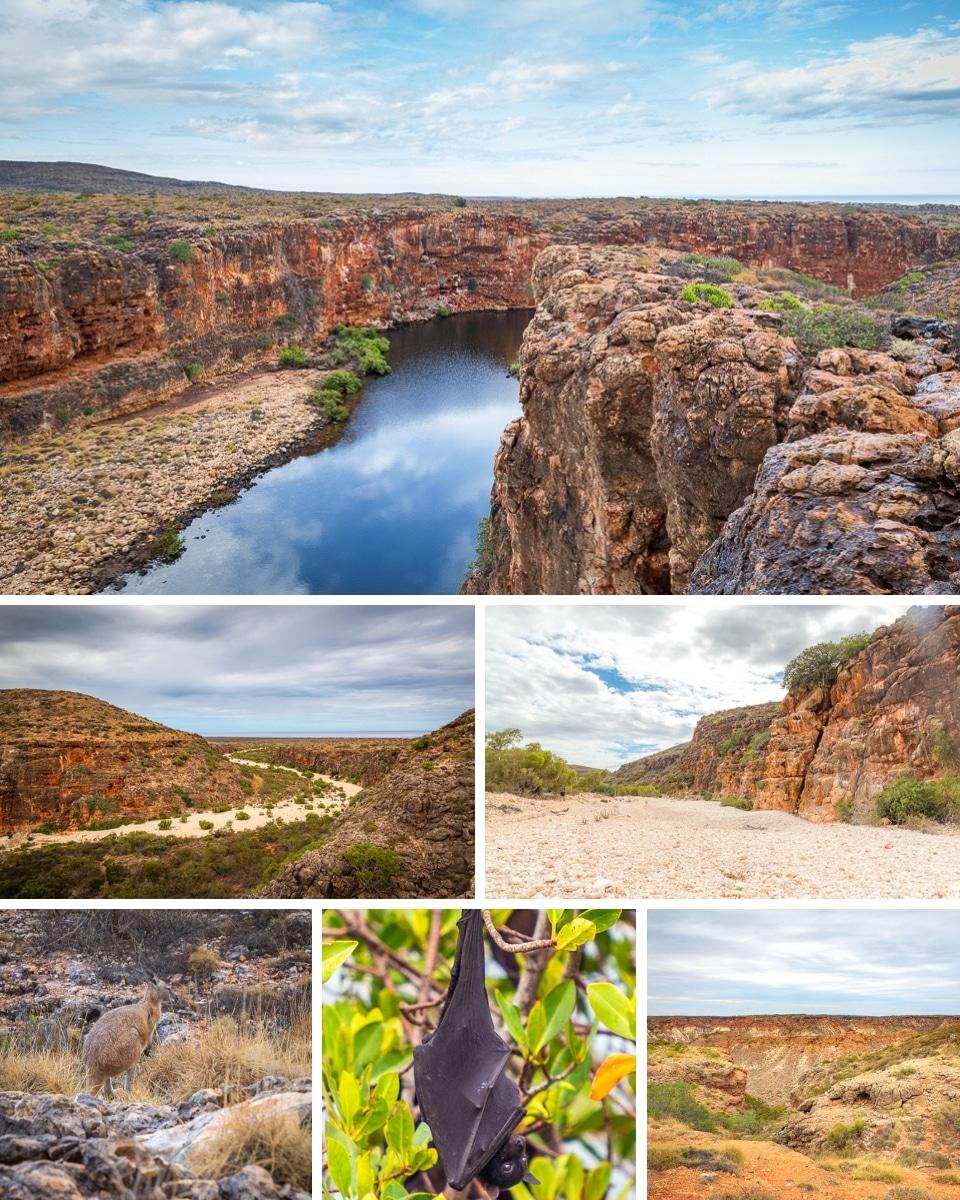 australie-ouest-cap-ranges