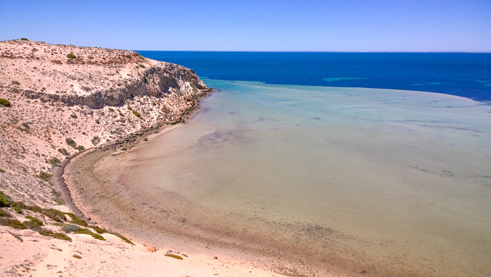 australie-ouest-shark-bay-39