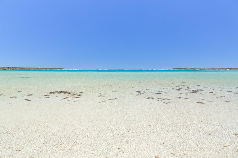 australie-ouest-shark-bay-44