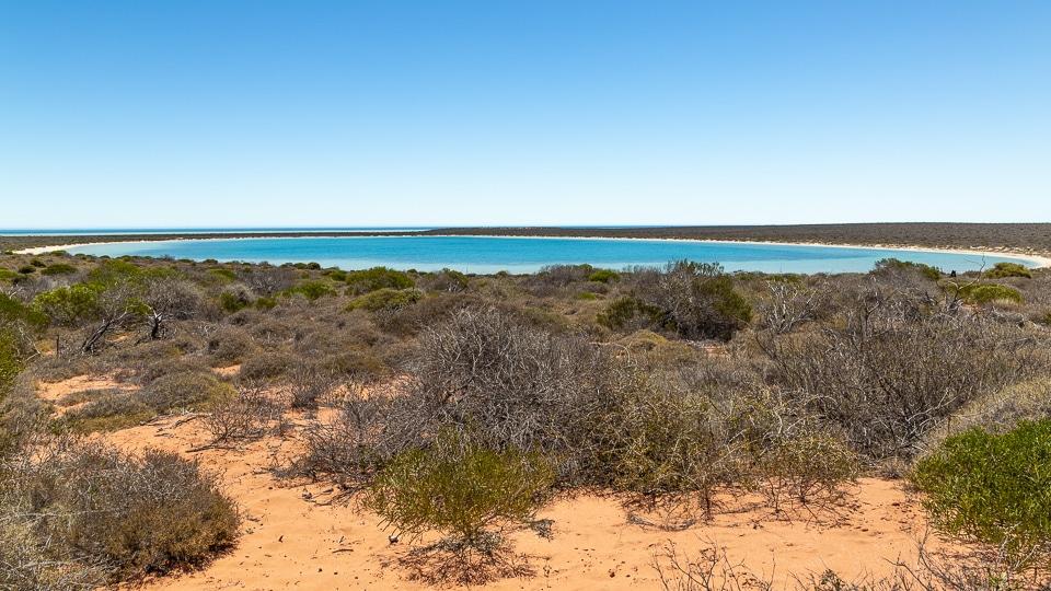australie-ouest-shark-bay-45