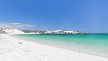 australie-shark-bay-header