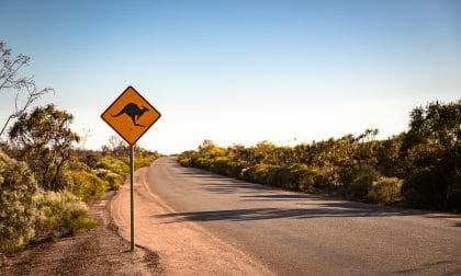 panneau de kangourou le long d'une route en Australie