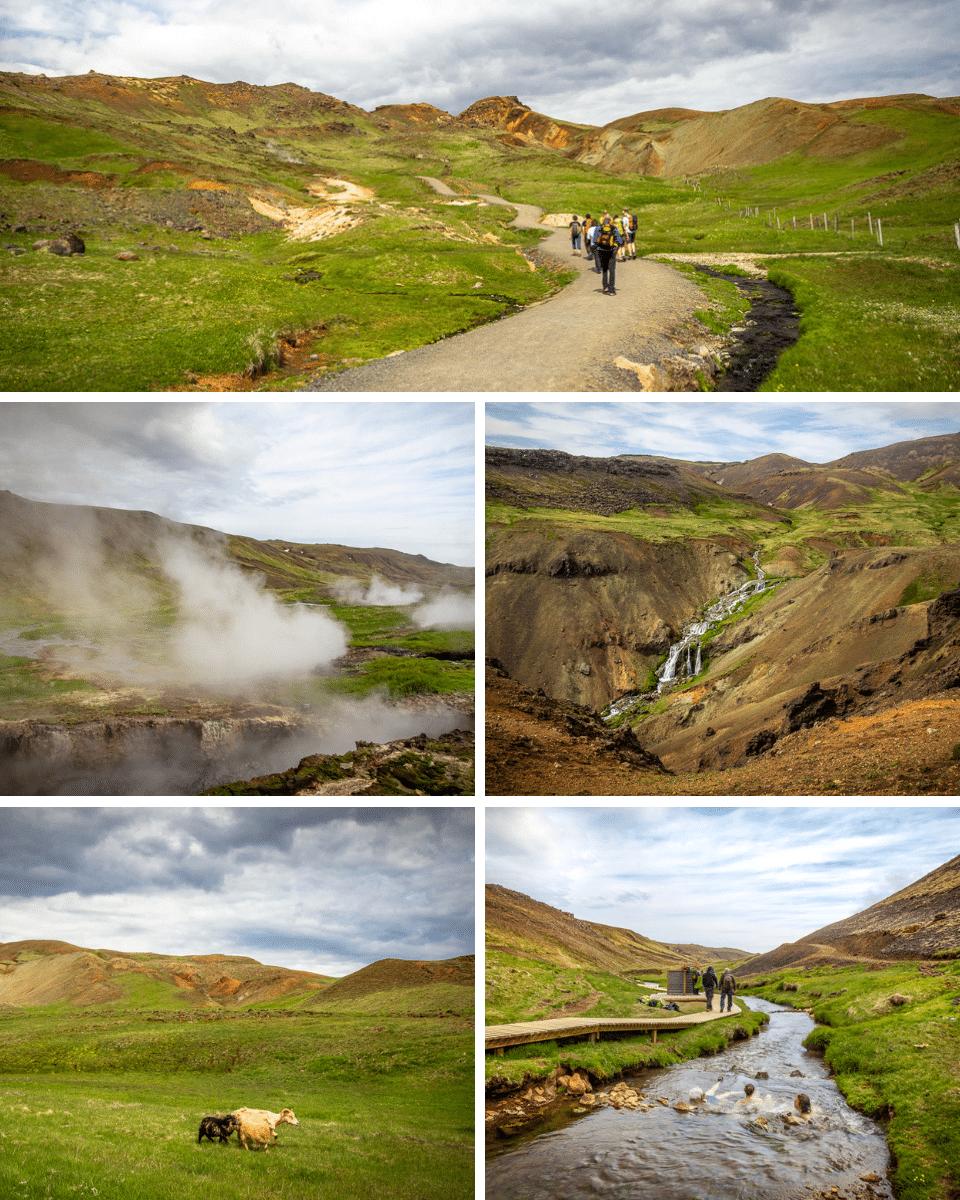 islande-Reykjadalur-09