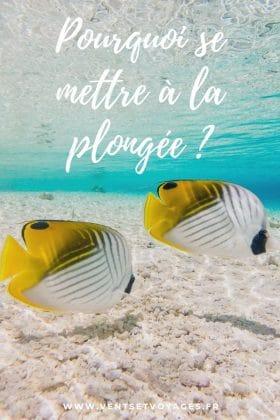pourquoi commencer la plongée sous-marine