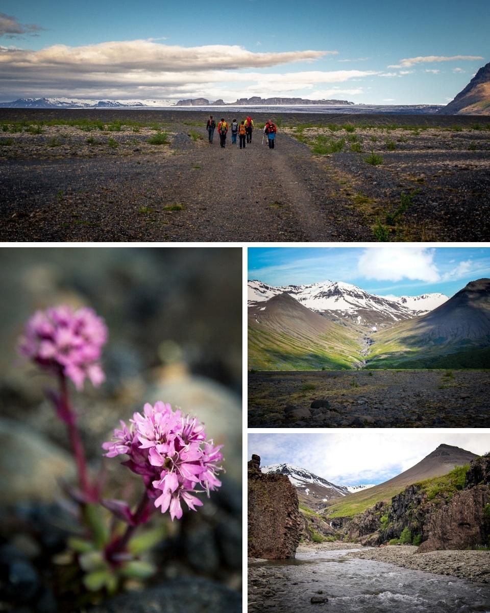 islande-ete-skaftafell-vatnajokull