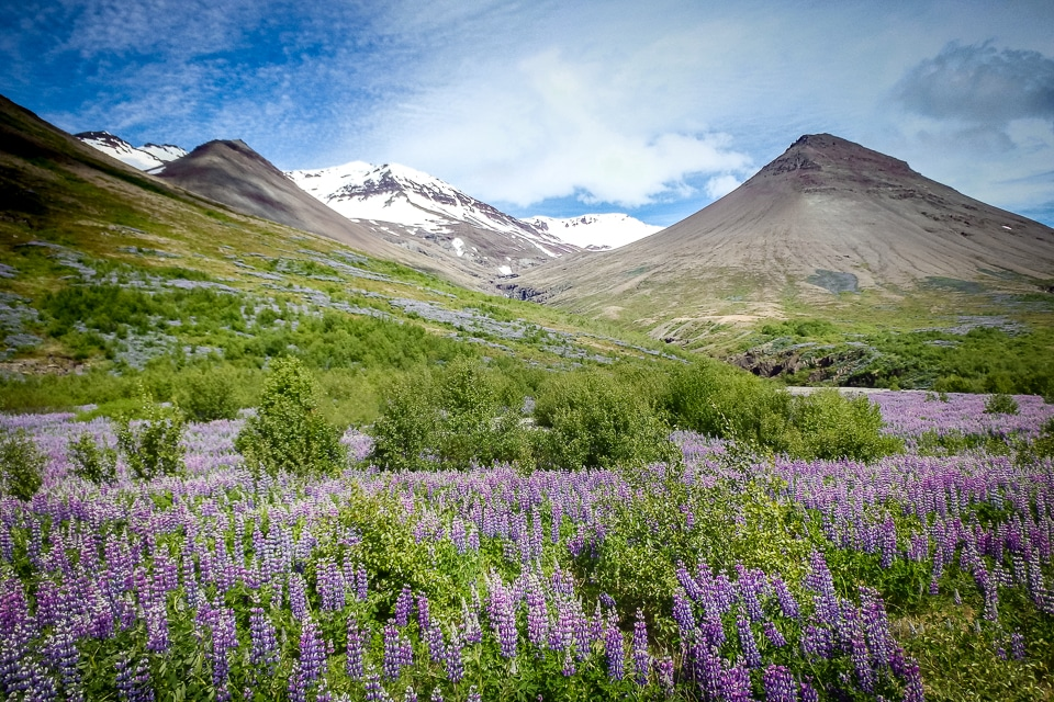 islande-skaftafell-Vatnajökull