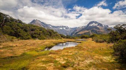 Découvrir les fjords autrement, mon expérience en kayak dans le Milford Sound
