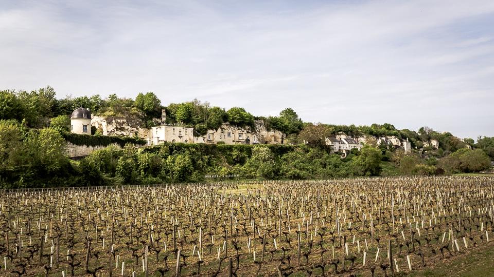 vignoble touraine val de Loire