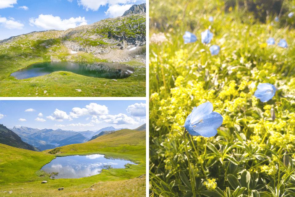 alpes-lac-noir-beaufortain