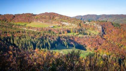 forêts du jura à l'automne