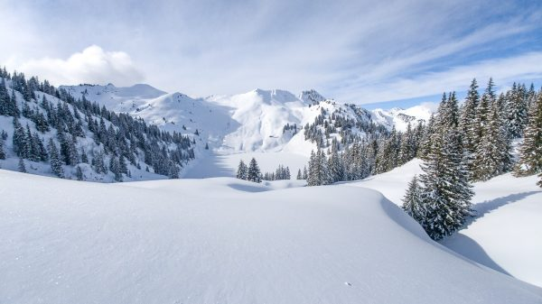 stockhorn oberland bernois sous la neige