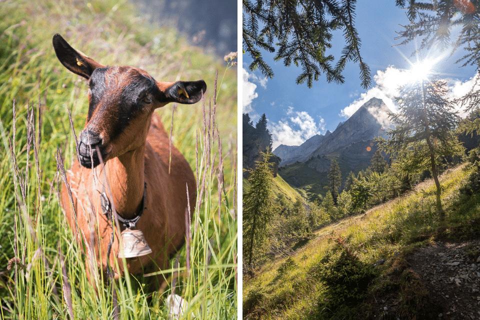 sex branlettes randonnée vaud suisse