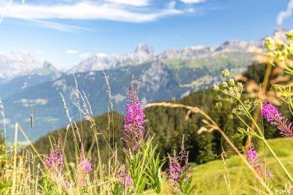 tour des dents du midi suisse