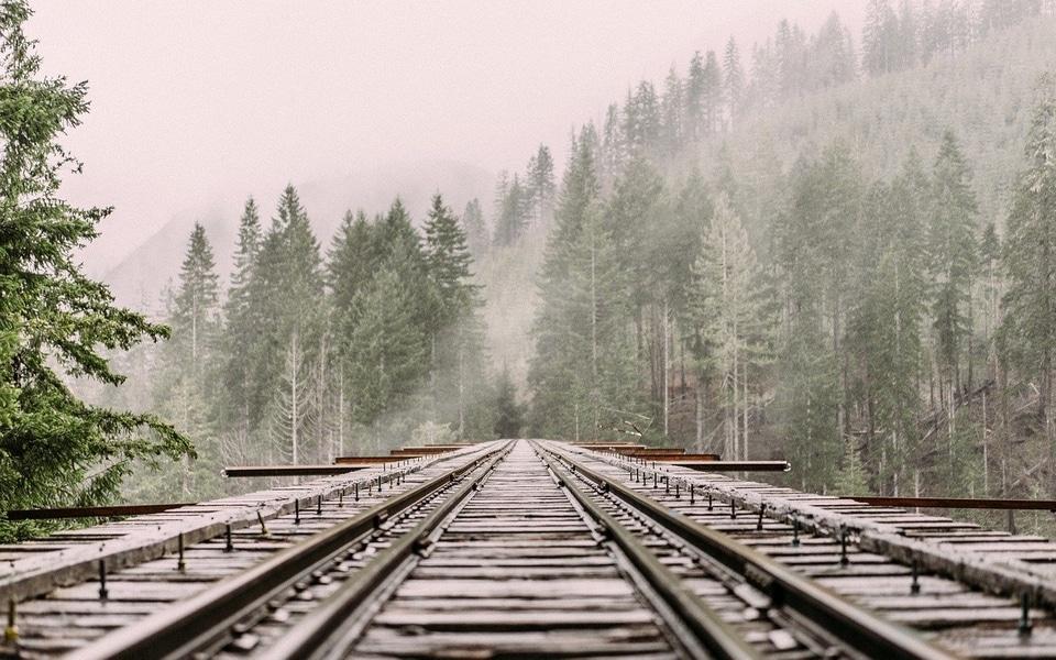 voie ferrée dans les sapins