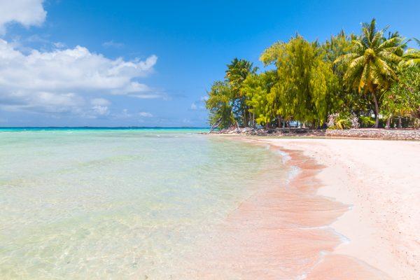 plage de sable rose en Polynésie