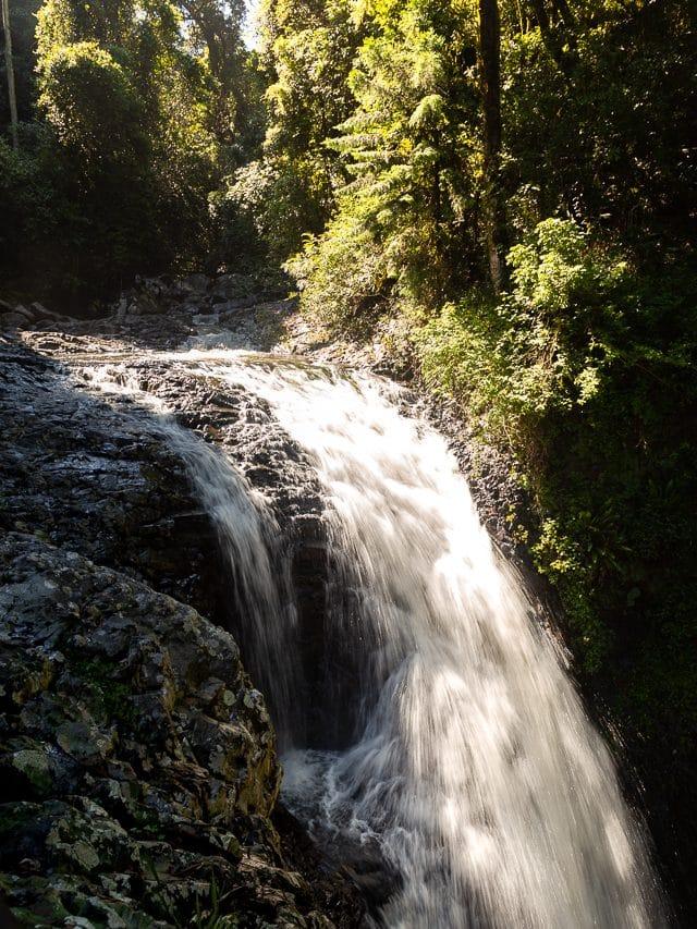 cascade springbrook